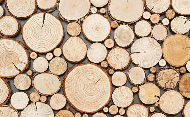 woodcollection_pure_1